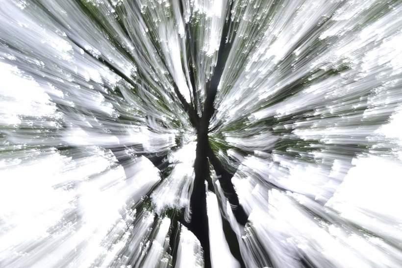 Golpe de zoom 2