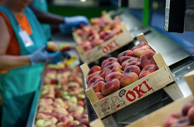OKI. Brand, advertising, packaging and website for fruit brand 3