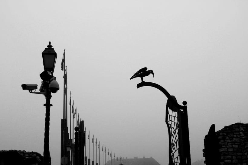 Trabajo Fotográfico (black and white). 3