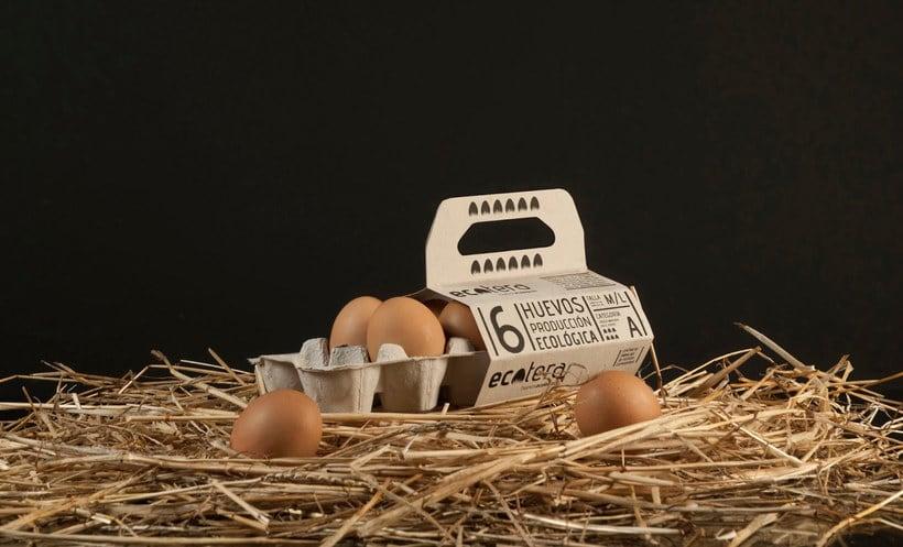 10 diseños de packaging con muchos huevos 10