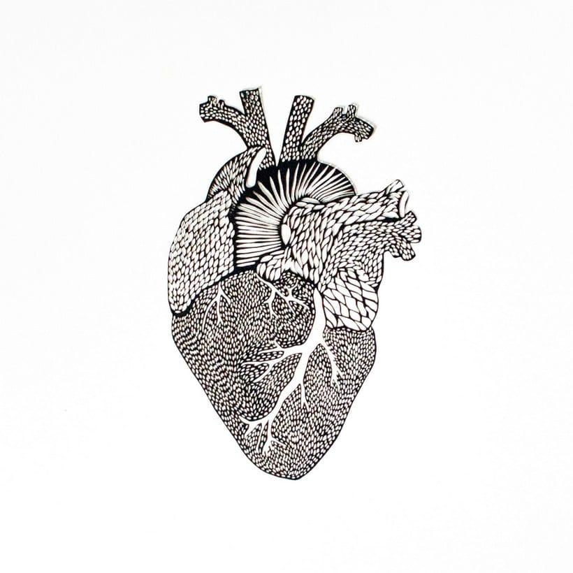 Los órganos vitales tallados en papel de Ali Harrison 3