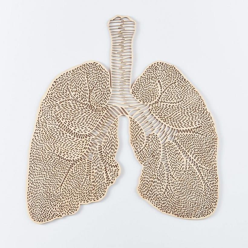 Los órganos vitales tallados en papel de Ali Harrison 5