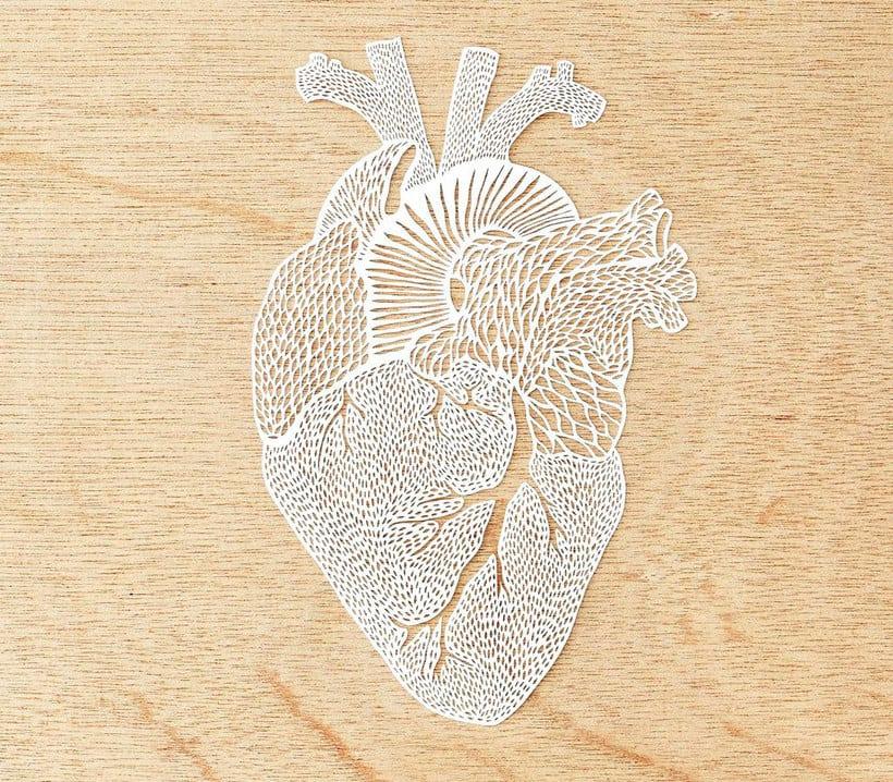 Los órganos vitales tallados en papel de Ali Harrison 6
