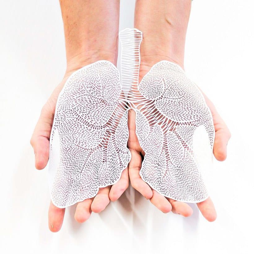 Los órganos vitales tallados en papel de Ali Harrison 12