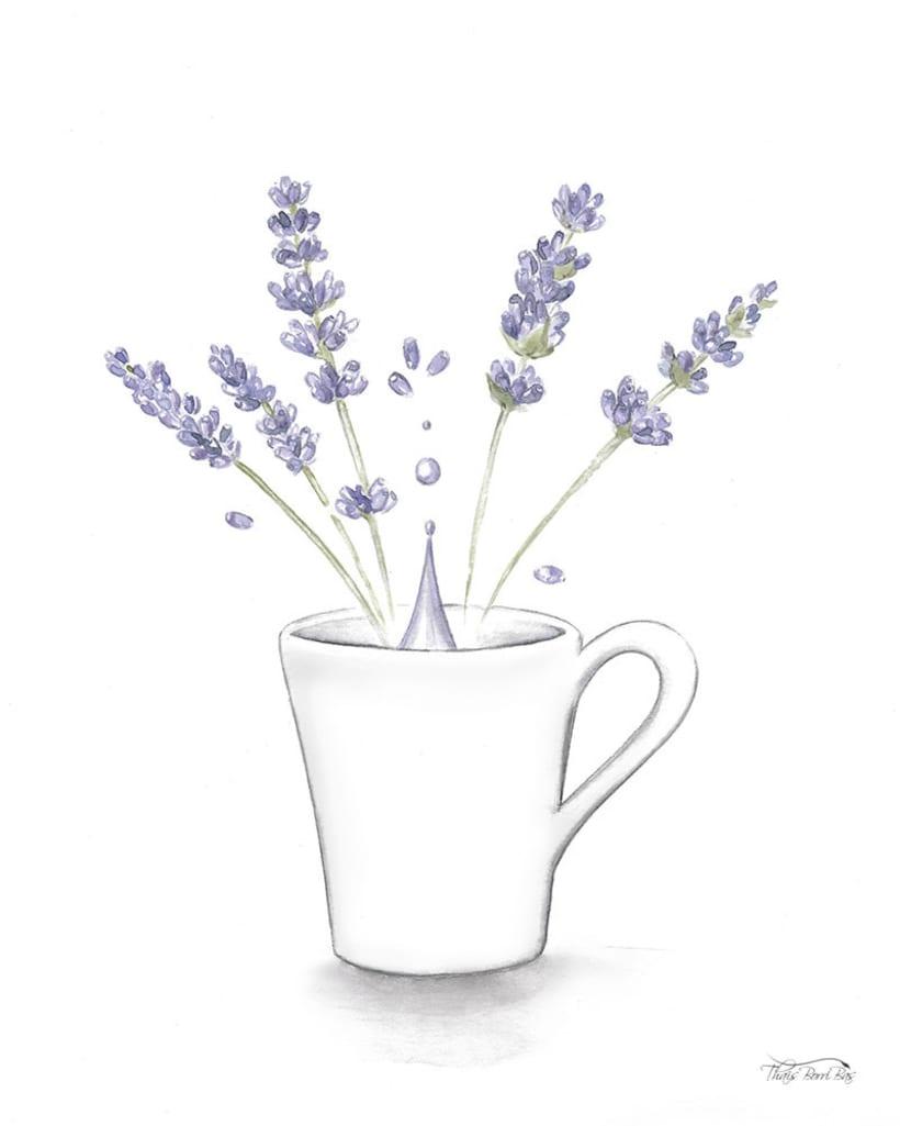 Exposición: plantas para beber 1
