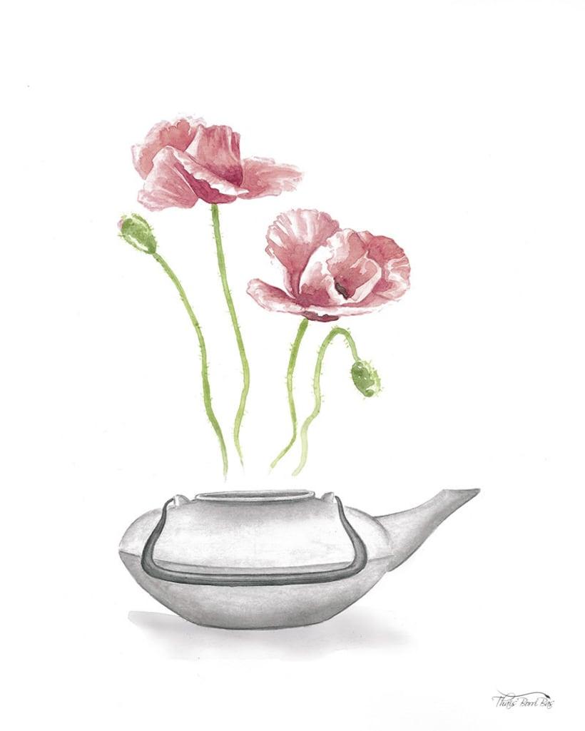 Exposición: plantas para beber 5