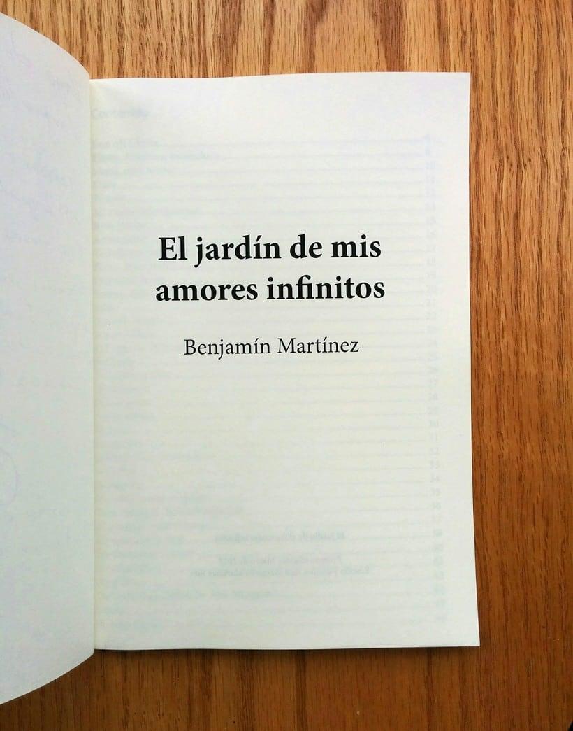 Libro de poesías. Poetry Book 2