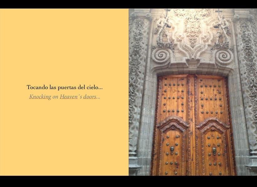 PUERTAS/DOORS 4