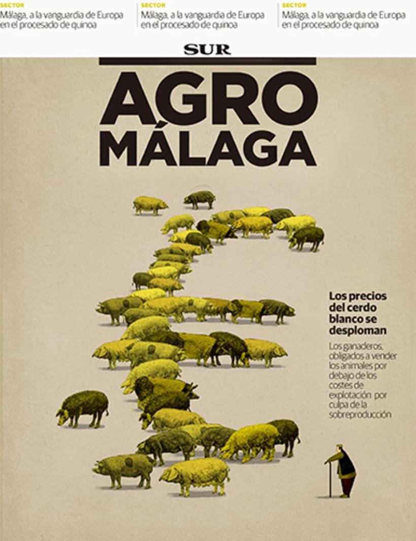 Portadas, El País, revista El Ciervo, La Marea, Diario Sur, Le Cool 3