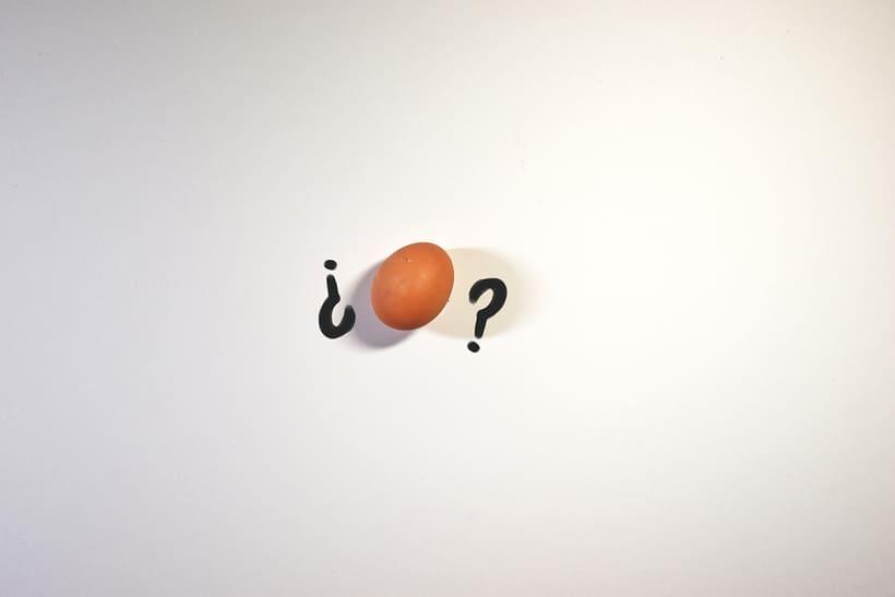 Mi Proyecto del curso: Cacareando Stop Motion: animación fotograma a fotograma con huevos :) 1