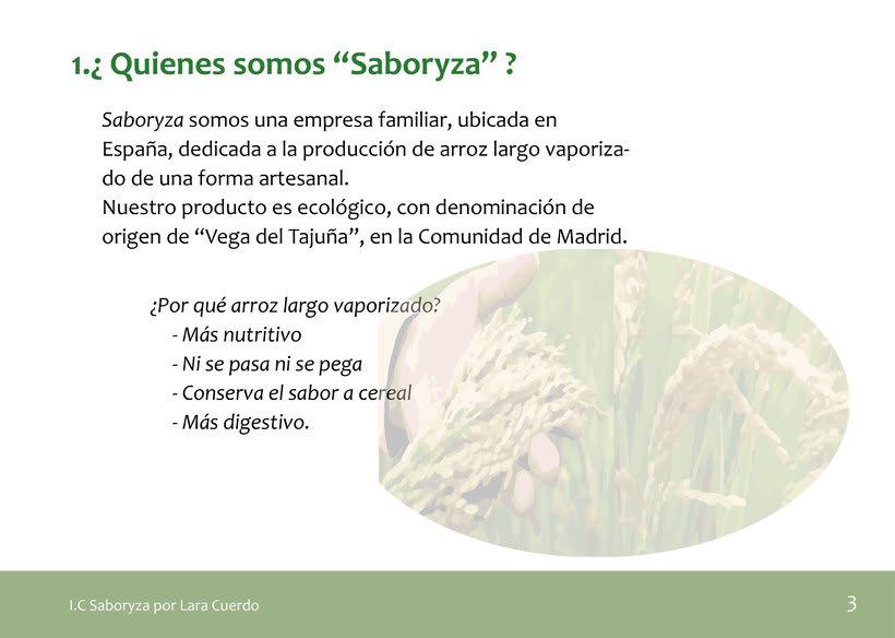 """Identidad Visual empresa de arroz """"Saboryza"""" 1"""