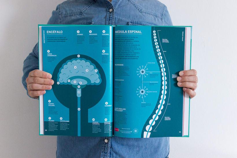 ANATOGRÁFICO | Guía infográfica de anatomía y salud humana 4