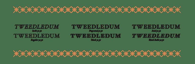 Type Specimen 4
