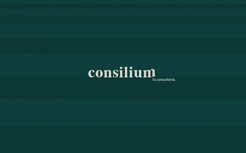 Consilium · Tu apoyo para crecer 5