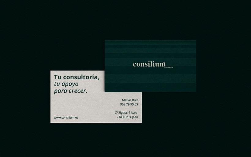 Consilium · Tu apoyo para crecer 8