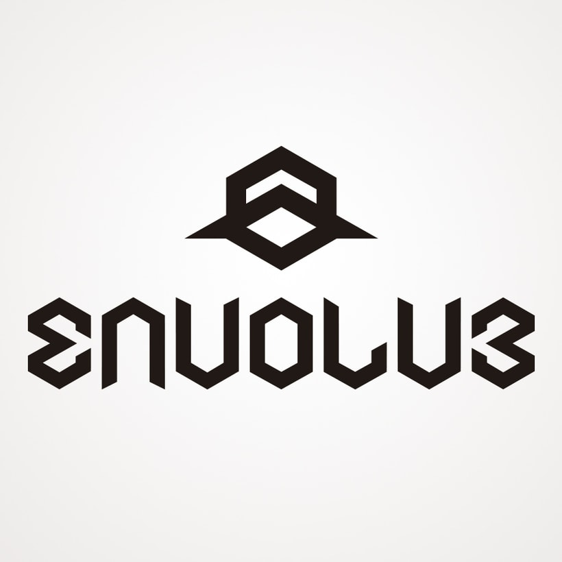 Envolve Logo 0