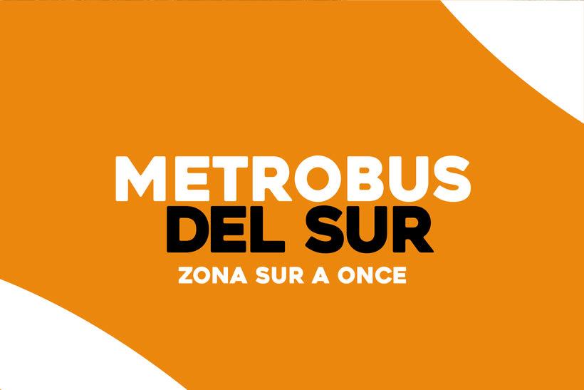 METROBUS DEL SUR 0