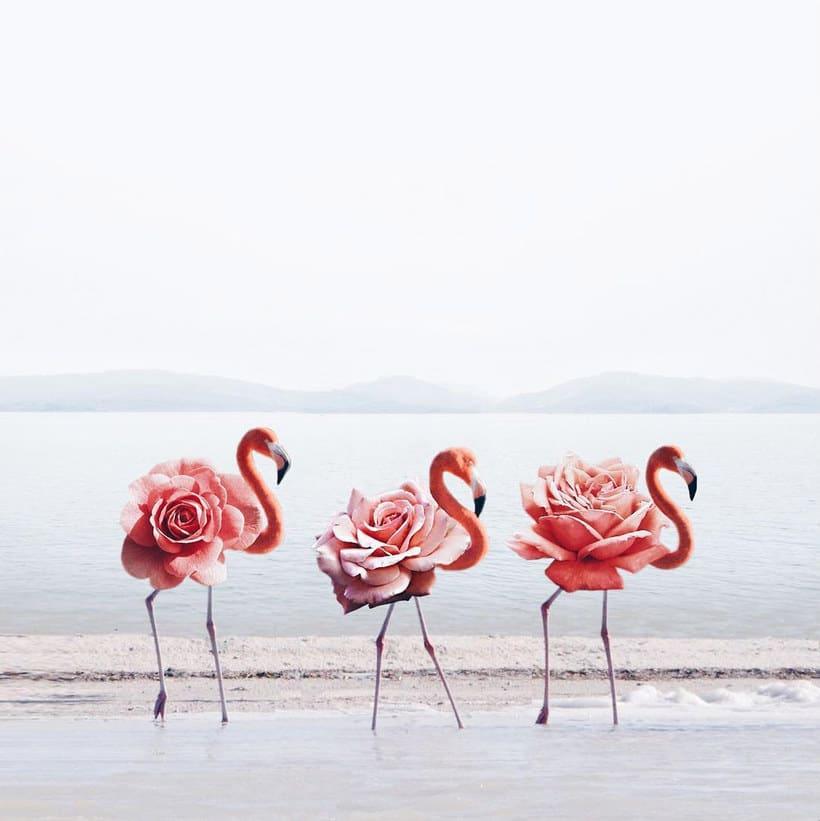 Luisa Azevedo desafía a la imaginación con sus fotografías 10