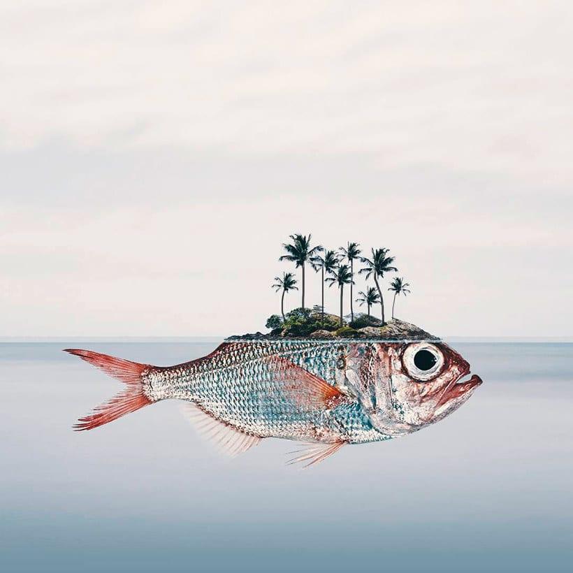 Luisa Azevedo desafía a la imaginación con sus fotografías 19