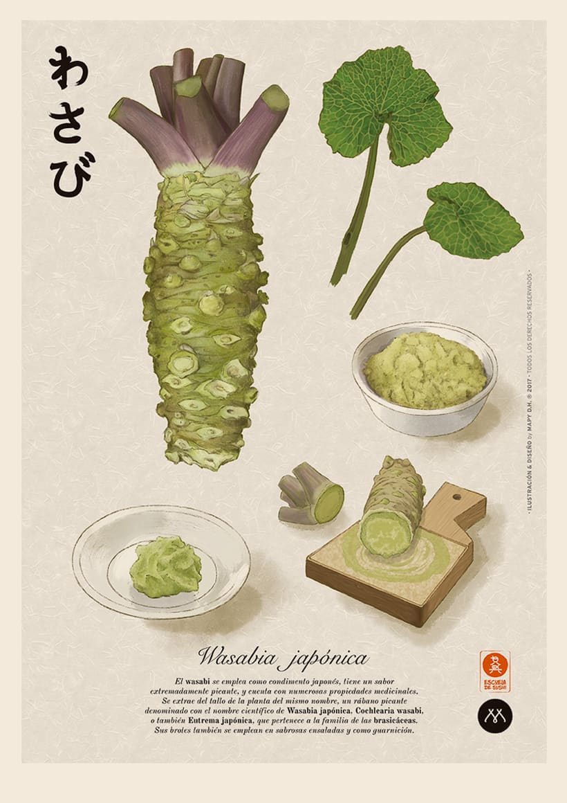 WASABI · Botanical Illustration 2
