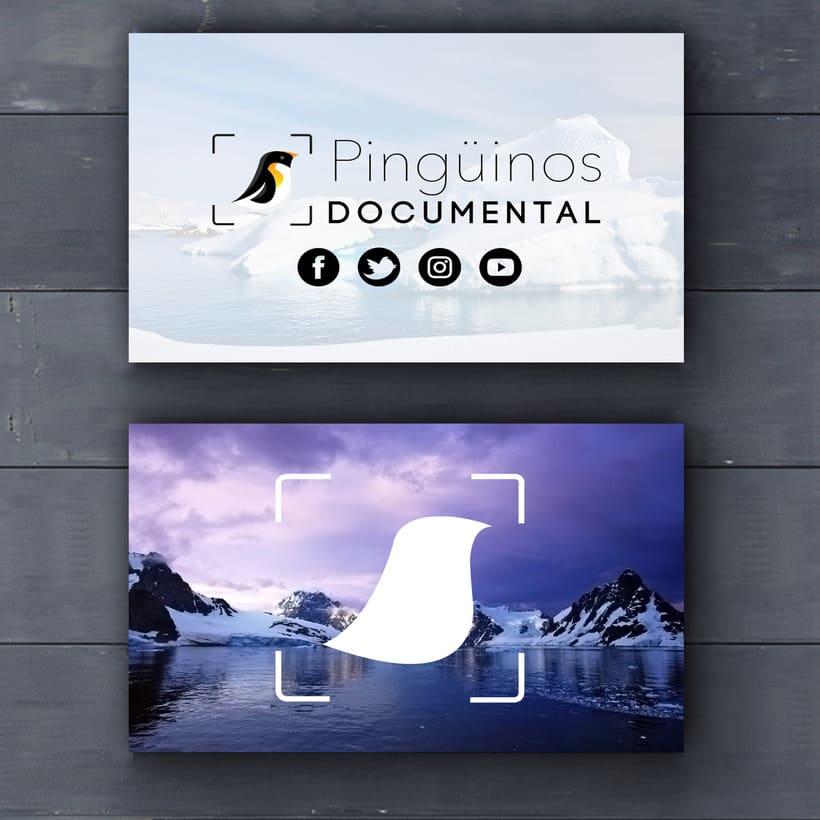 Identidad Corporativa Pingüinos Documental 0
