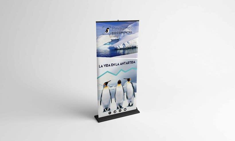 Identidad Corporativa Pingüinos Documental 2