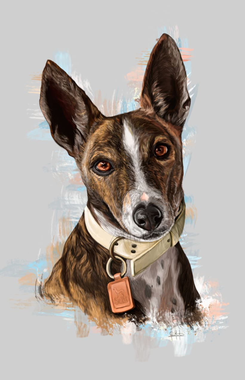 Dog portraits  1