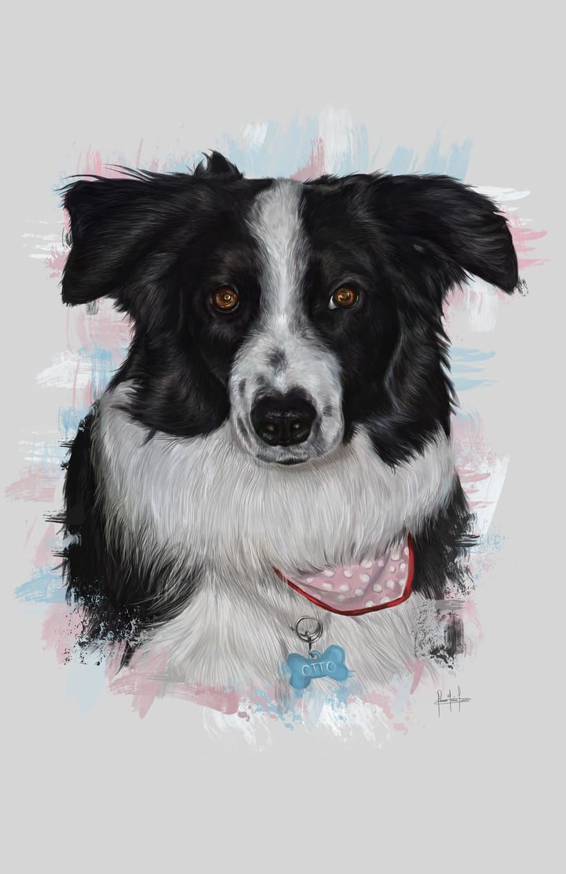 Dog portraits  10