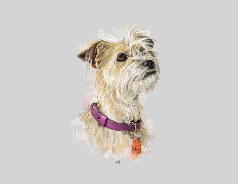 Dog portraits  13