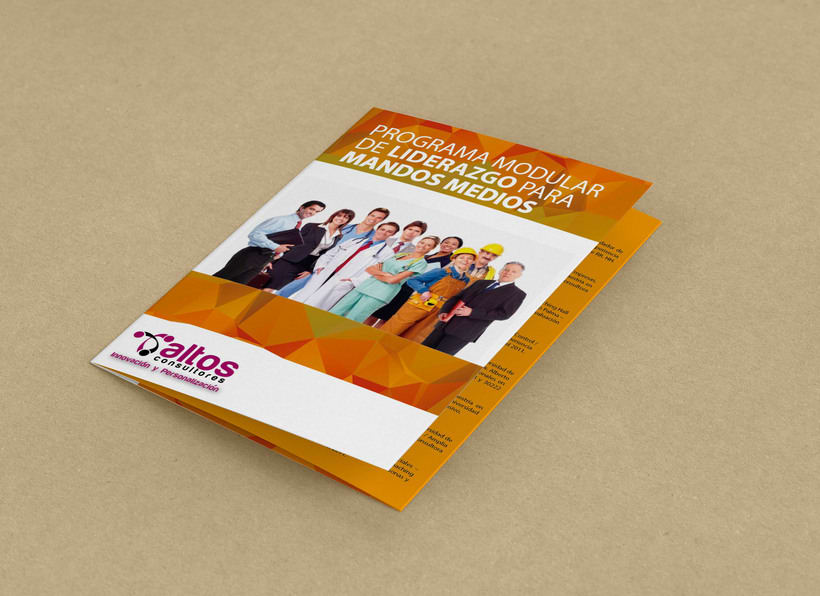 Brochure Programa de Liderazgo 0