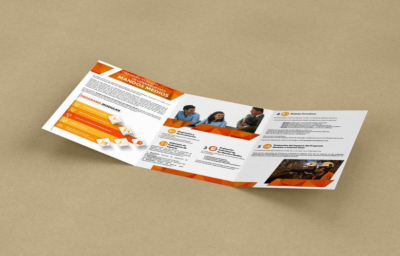 Brochure Programa de Liderazgo 1
