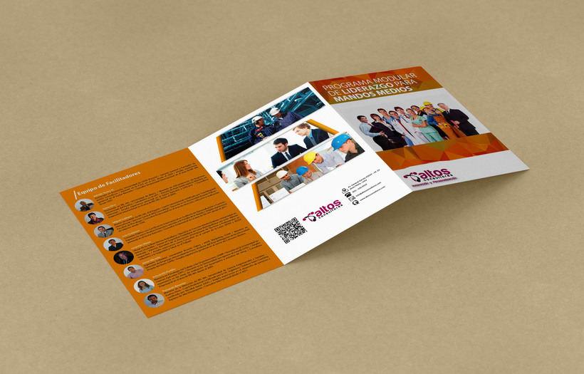 Brochure Programa de Liderazgo 2