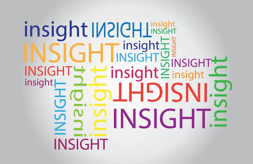 ¿Insight, plan estratégico? 1