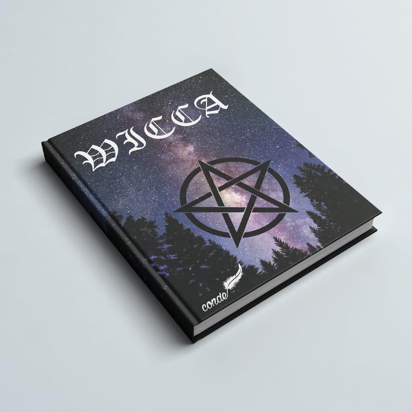 Linea Gráfica de libro  2