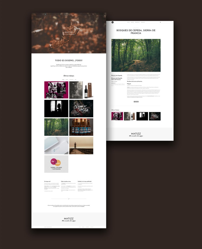 Diseño web: Matizz -1