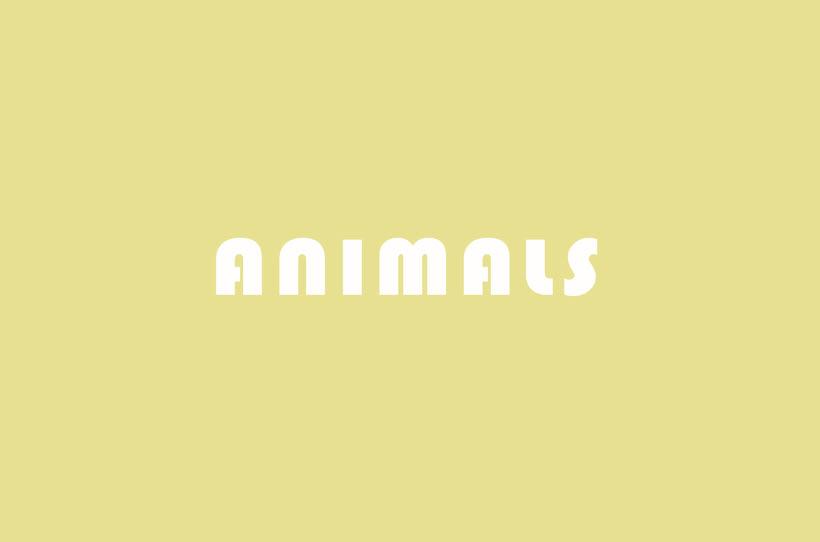 ANIMALS -1