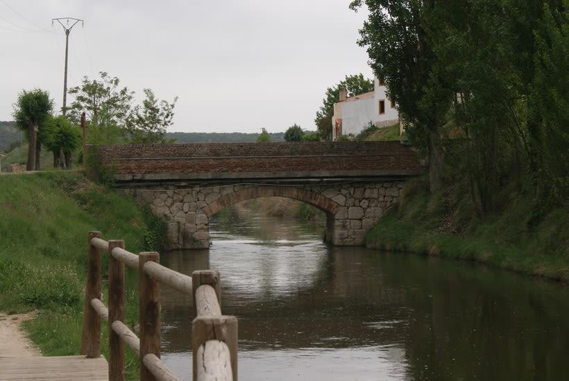 Roa de Duero 21