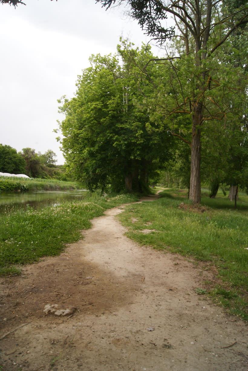 Roa de Duero 25
