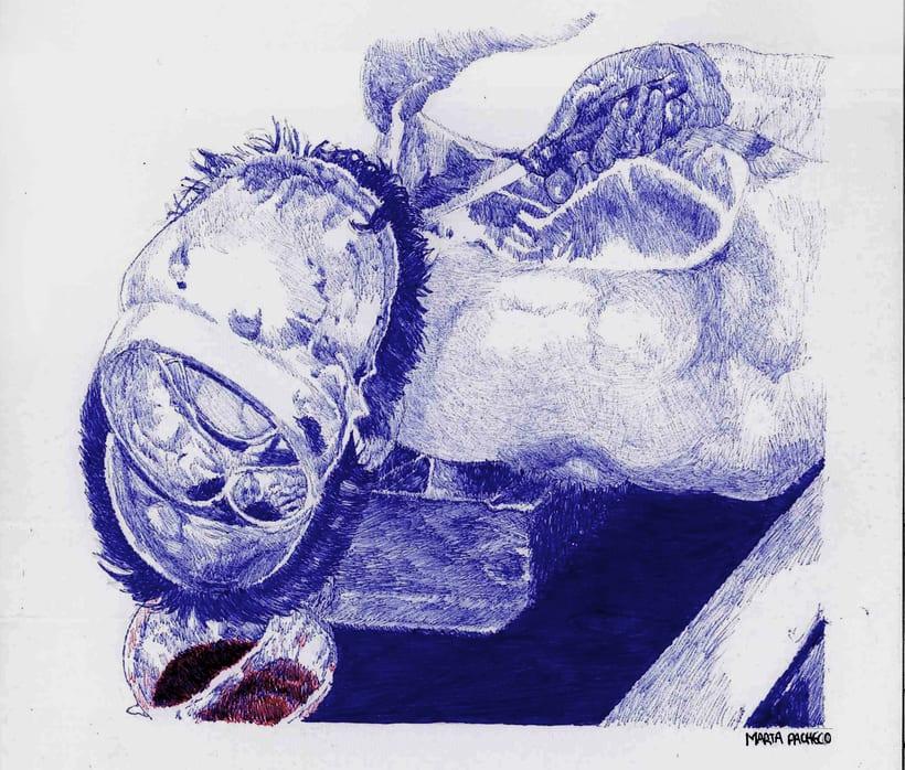 Ilustraciones en bolígrafo  8