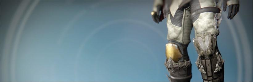 Cazador de Destiny | Cosplay 19