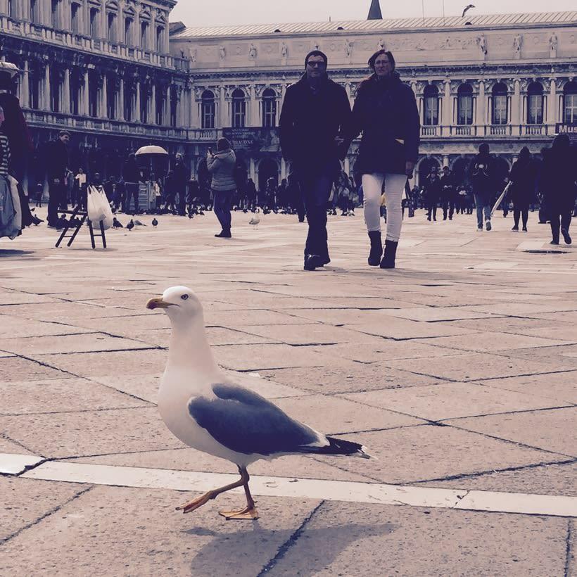 Venecia, realmente una ciudad que enamora 20