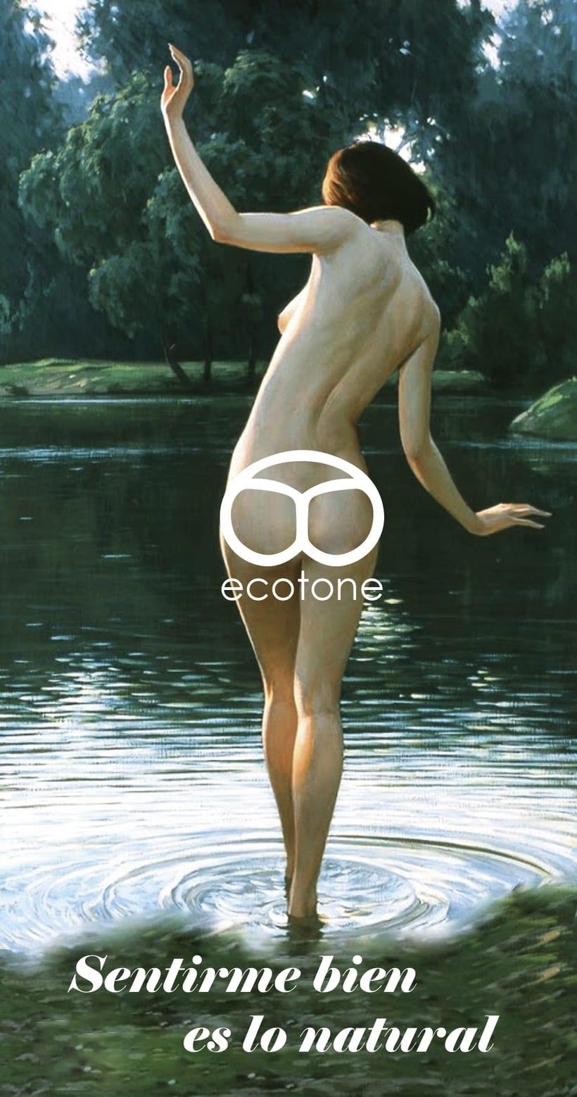 Ecotone 2