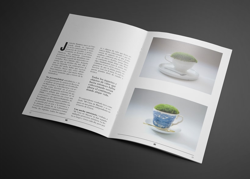 Revista We 1
