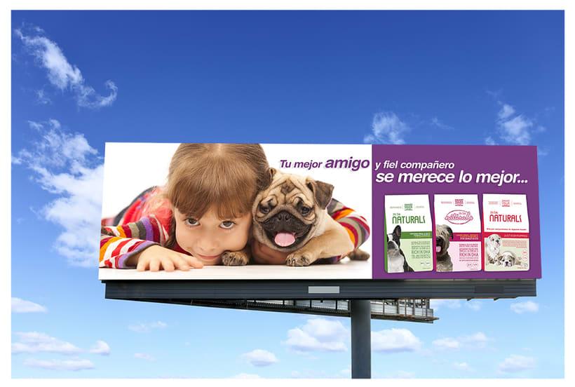 Billboard Concept Designs for Plaza Provision 1