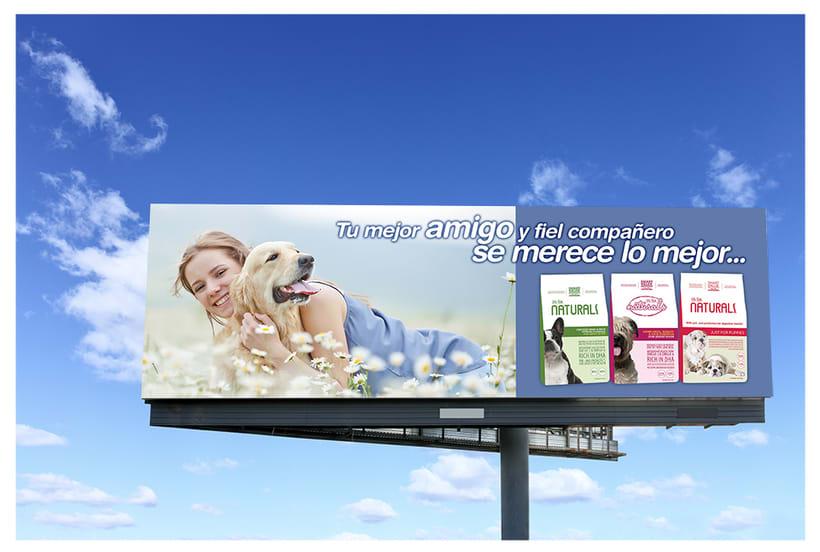 Billboard Concept Designs for Plaza Provision 2