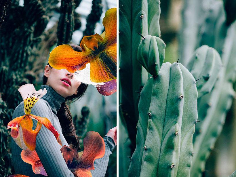 El delicioso collage analógico y surrealista de Rocío Montoya 11
