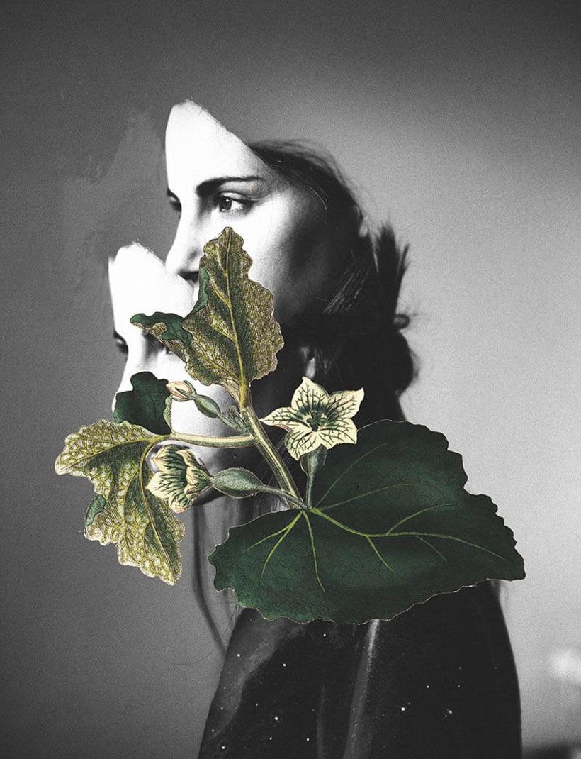 El delicioso collage analógico y surrealista de Rocío Montoya 25