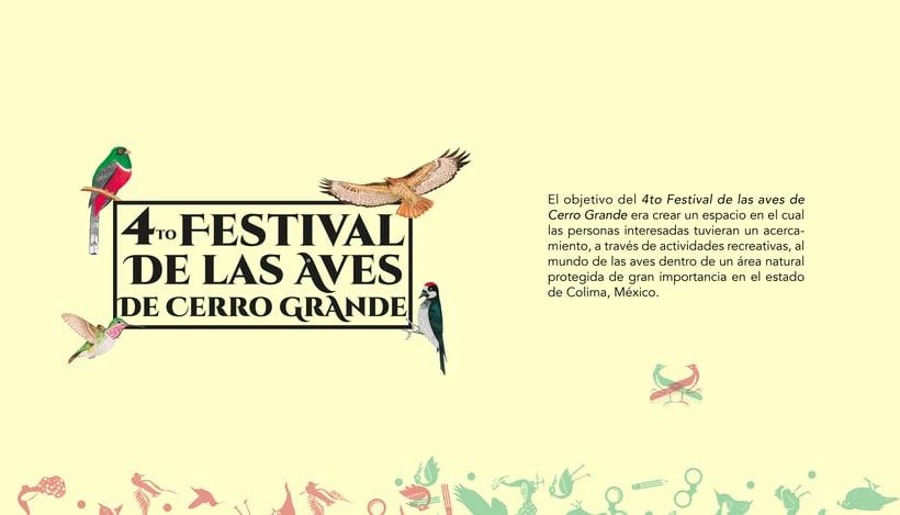 4to Festival de las Aves de Cerro Grande 0