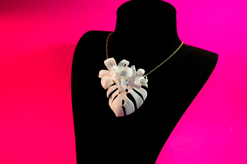 The Lily Collection  5