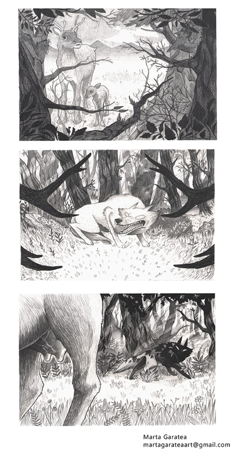 Traditional Illustrations -1